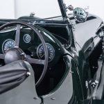 Jaguar groen-9027