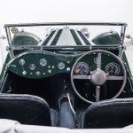 Jaguar groen-9030