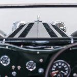 Jaguar groen-9032