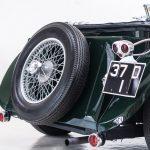 Jaguar groen-9034