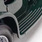 Jaguar groen-9036