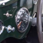 Jaguar groen-9043