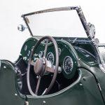 Jaguar groen-9044
