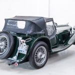 Jaguar groen-9051