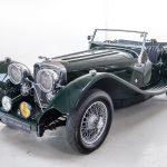 Jaguar groen-9071