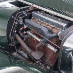 Jaguar groen-9077