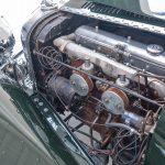Jaguar groen-9078